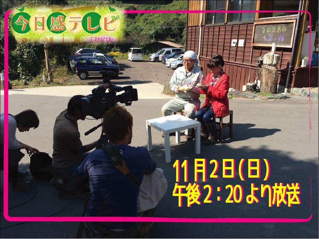 11/2(日)RKB今日感テレビに出演します!